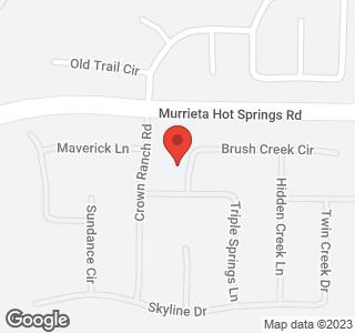 39051 New Meadow Drive