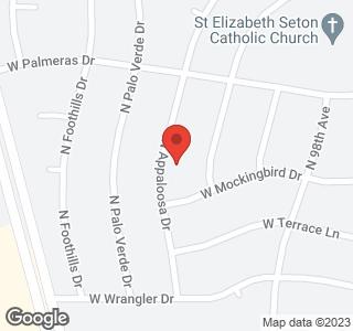 17411 N APPALOOSA Drive