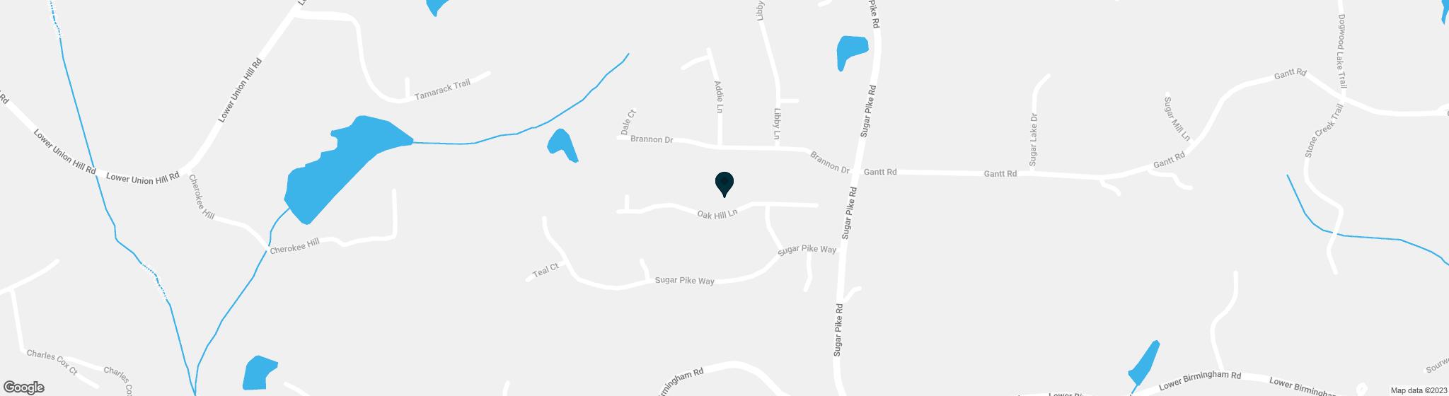 321 Oak Hill Lane Canton GA 30115