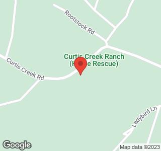 99999 Curtis Creek Road