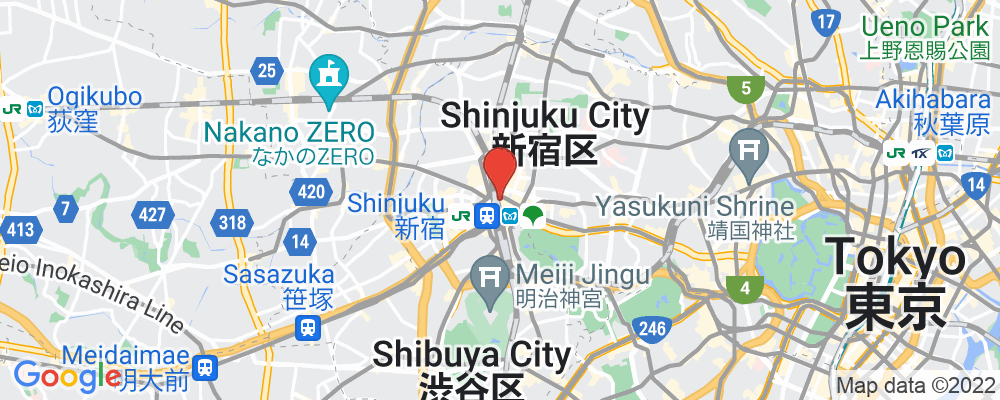 A Tour of the Cyberpunk Town, Kabukicho