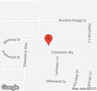 3324 Calendula Way (Lot 217)