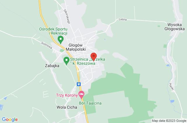 Wyświetl Agnieszka Hołysz,SATSERWIS na mapie