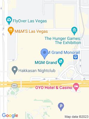MGM Grand Garden Arena Location