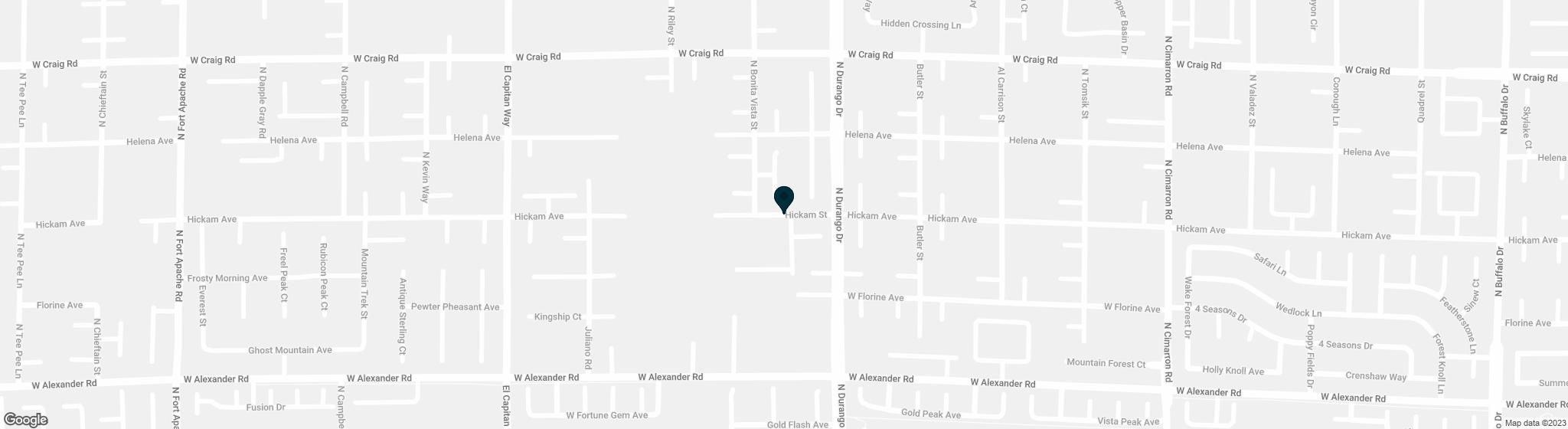8463  Hickam Avenue Las Vegas NV 89129