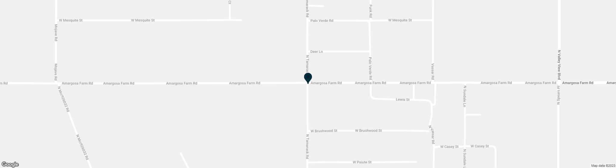 1599  Tamarack Road Amargosa NV 89020