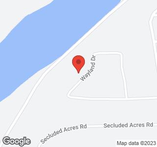 817 Wayland Drive
