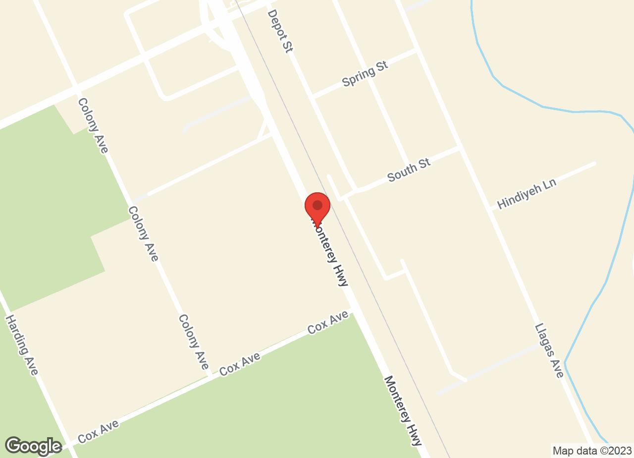 Google Map of VCA San Martin Animal Hospital