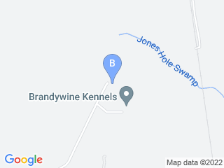 Map of Brandywine Kennels Dog Boarding options in Petersburg | Boarding