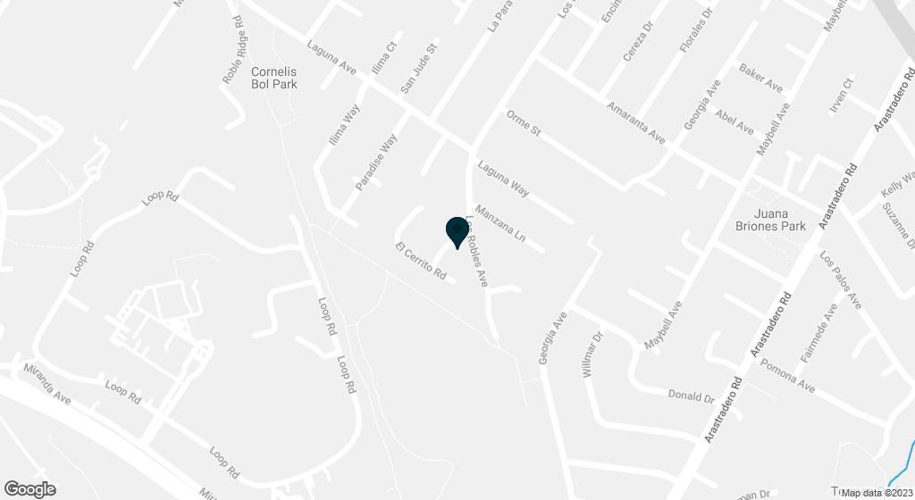 1003 Cerrito Palo Alto CA 94306
