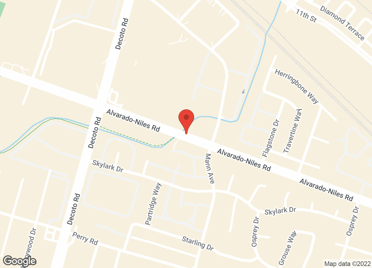 Google Map of VCA All About Pets Animal Hospital