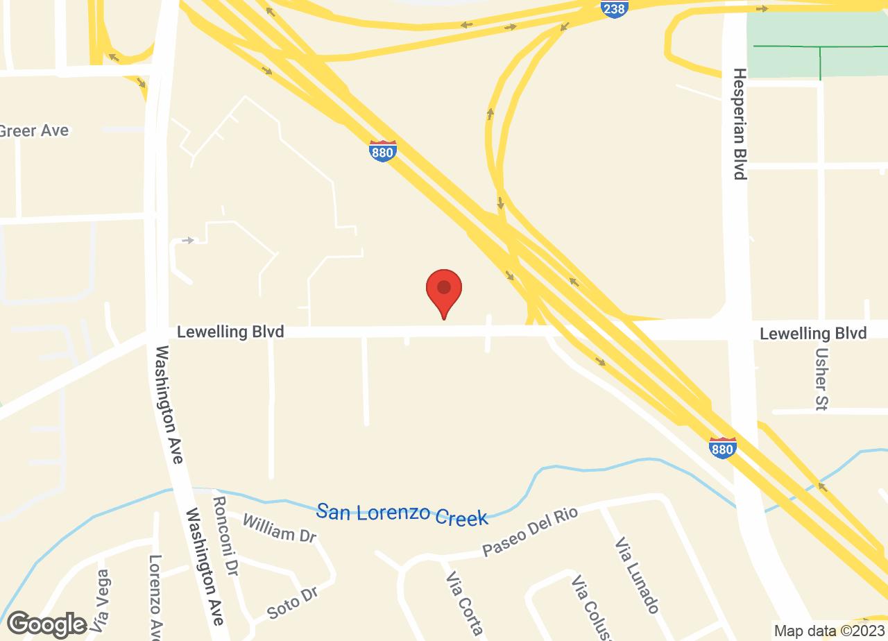 Google Map of VCA Lewelling Animal Hospital