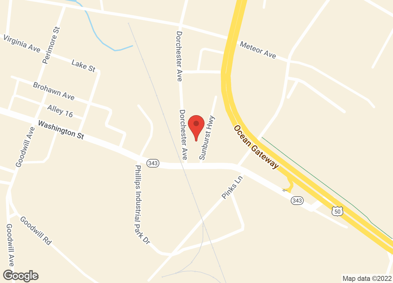 Google Map of VCA Choptank Animal Hospital