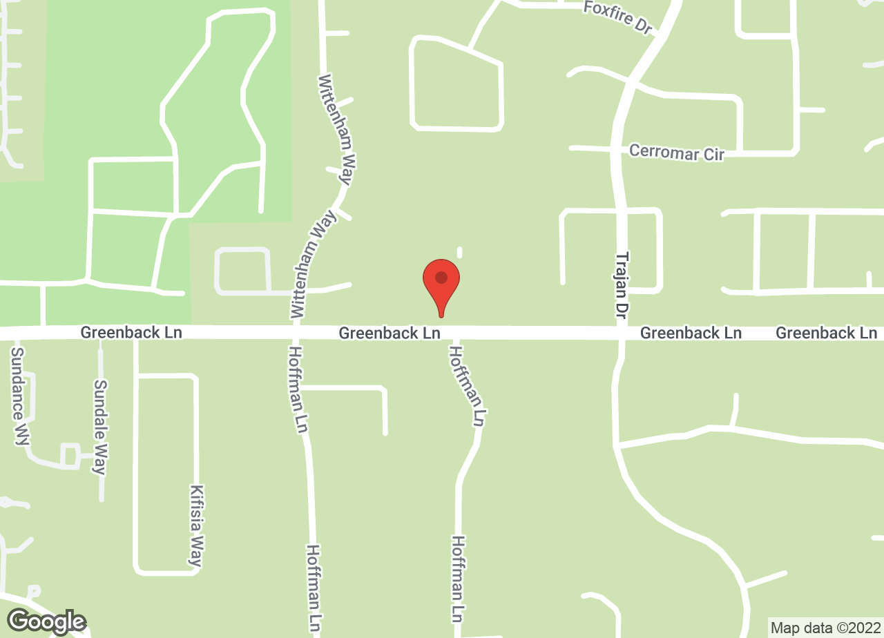 Google Map of VCA Greenback Animal Hospital