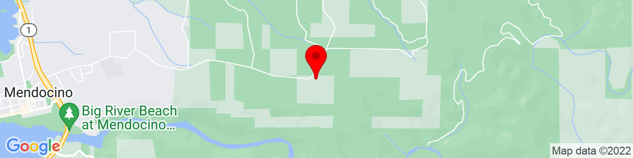 Google Map of 39.3094166, -123.7486784