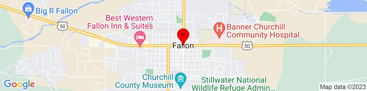 Google Map of 39.4748693, -118.7770407