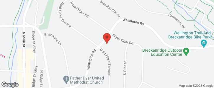 300 Wellington Road Breckenridge CO 80424