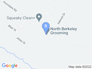 Map of North Berkeley Grooming Dog Boarding options in Martinsburg | Boarding