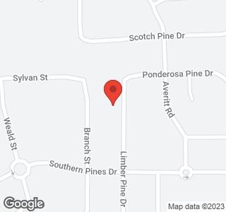 2890 Limber Pine Drive