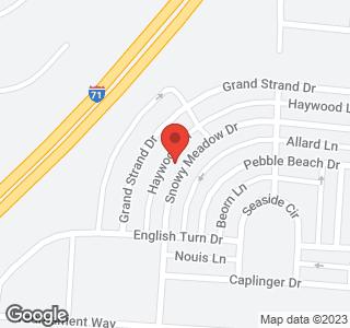 4645 Snowy Meadow Drive