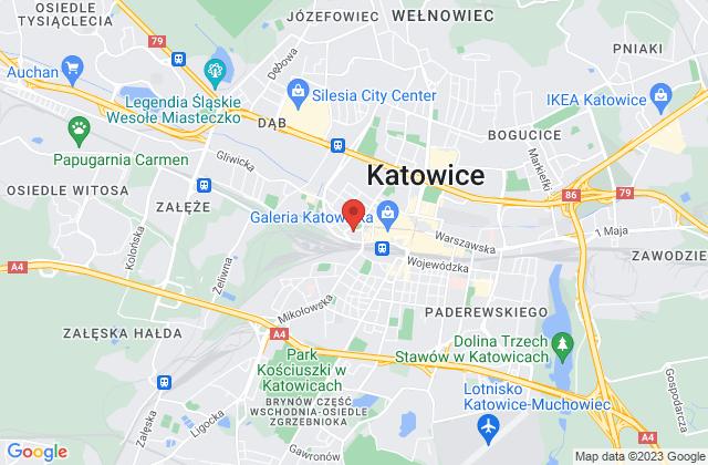 Wyświetl Janusz Miczajkowski,JM Consulting na mapie