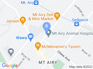 Map of Mt. Airy Animal Hospital Dog Boarding options in Philadelphia | Boarding