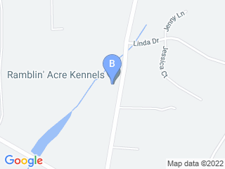 Map of Ramblin Acre Kennels Dog Boarding options in Jackson | Boarding