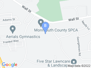 Map of Camp Bow Wow Dog Boarding Eatontown Dog Boarding options in Eatontown | Boarding