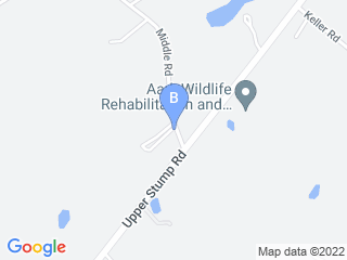 Map of Animal Lodge Dog Boarding options in Perkasie | Boarding