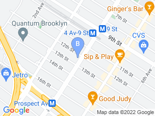 Map of Brooklyn Kitty Sitter Dog Boarding options in Brooklyn | Boarding