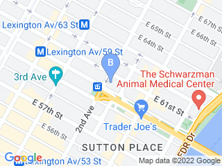 Map of Ruby   Jacks Doggy Shack Dog Boarding options in New York | Boarding
