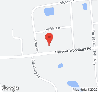 299 Syosset Woodbury Rd