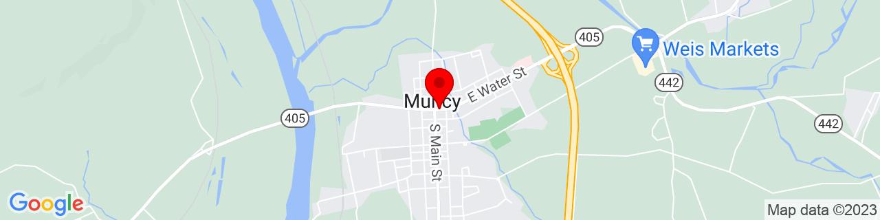 Google Map of 41.205555555555556, -76.78555555555555
