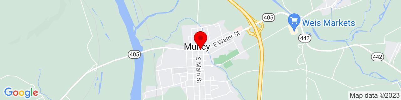 Google Map of 41.2056373, -76.78551519999999
