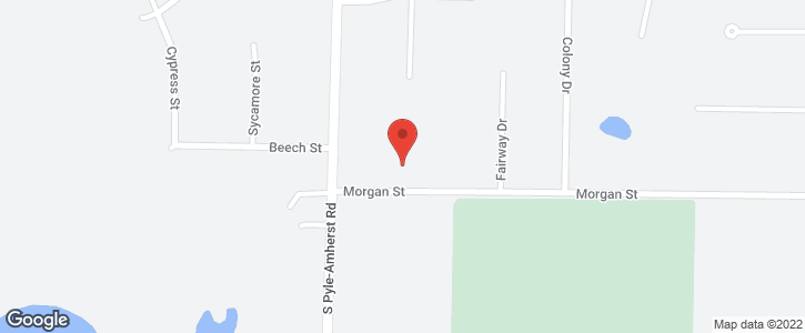 542 Morgan Street Oberlin OH 44074