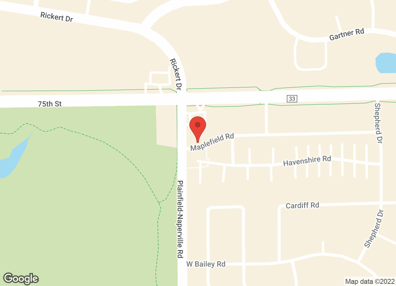 Google Map of VCA Naper Ridge Animal Hospital