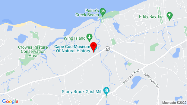 Google Map of 869 Main Street (Route 6A), Brewster, MA 02631