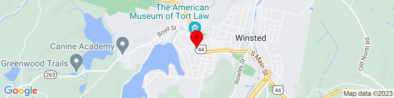 Google Map of 41.9214895, -73.0751173
