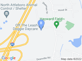 Map of Off Leash Doggie Day Care Dog Boarding options in Attleboro | Boarding