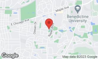 Map of 419 Millcreek Lane NAPERVILLE, IL 60540