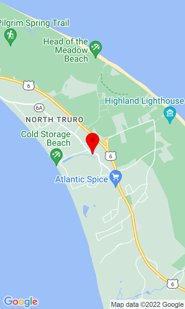 Google Map of 42 Shore Road Truro MA