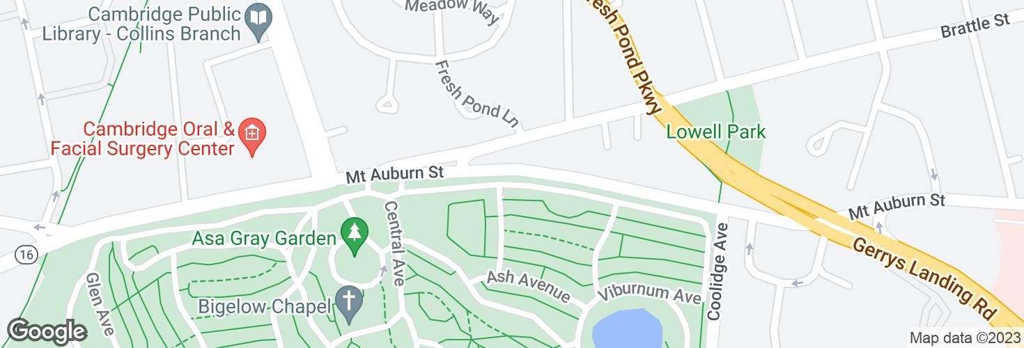 Map of Mt Auburn St opp Brattle St and surrounding area
