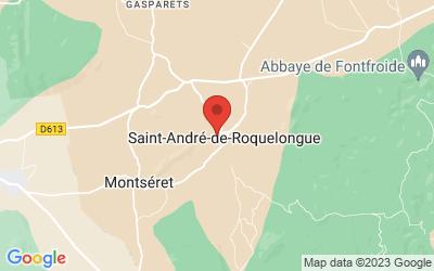 Route de Montseret 11200 SAINT-ANDRE-DE-ROQUELONGUE