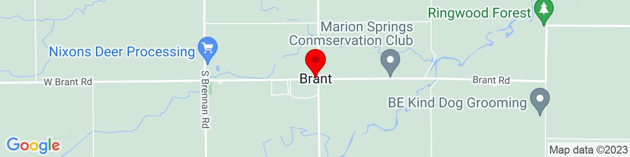 Google Map of 43.2591911, -84.22970459999999