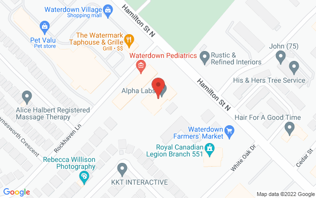 Waterdown Physiotherapy Static Google Map Wide Version