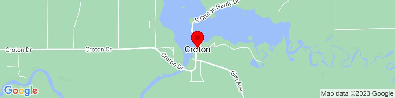 Google Map of 43.4389123, -85.6608793