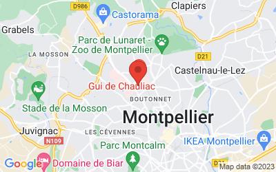 486 Rue du Triolet, 34090 Montpellier, France