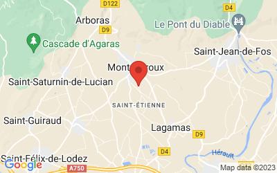 670 Chemin des Saumailles, 34150 Montpeyroux, France
