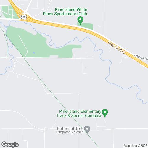 Google Static Map Image