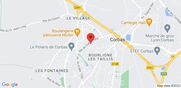 Achat terrains industriels + bâtiments - Lyon-Corbas (69)